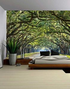 Wall  long pathway in an arch tree covered forest wall mural removable sticker home decor  inches also best ideas about  colleges on pinterest dance rh uk