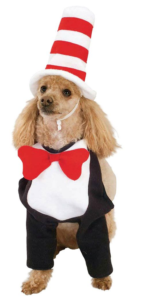 Cat Dog Costume For Dogs