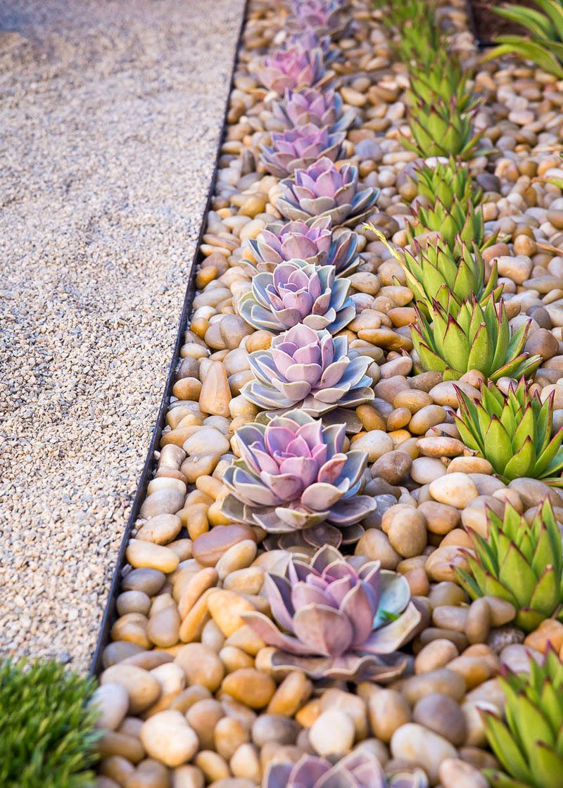 8 Elements To Include When Designing Your Zen Garden // Succulents — Plant life connects you to nature and aids in the process of