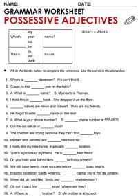 All Worksheets  Possessive Adjectives And Possessive
