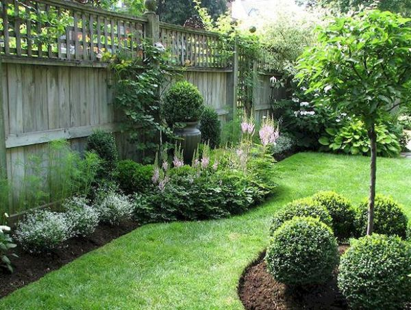 backyard privacy fence landscaping