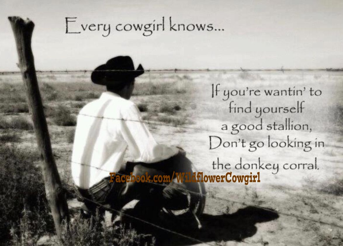 Cowboy Love Quotes Cowgirl Love Quotes About Cowboys And Horses Picture
