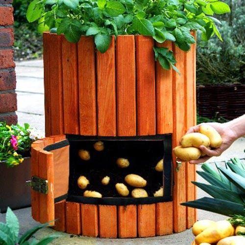 Veggie Planter Box