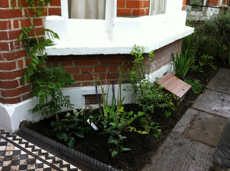 Victorian Terrace Front Garden Ideas Google Search Garden