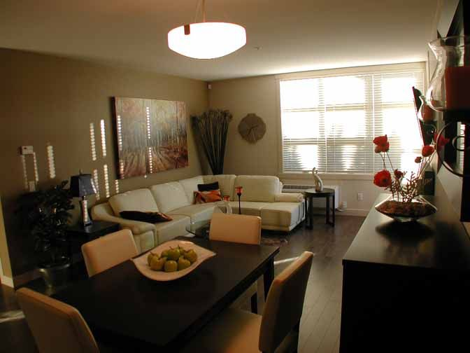 small living room dining room combo designs