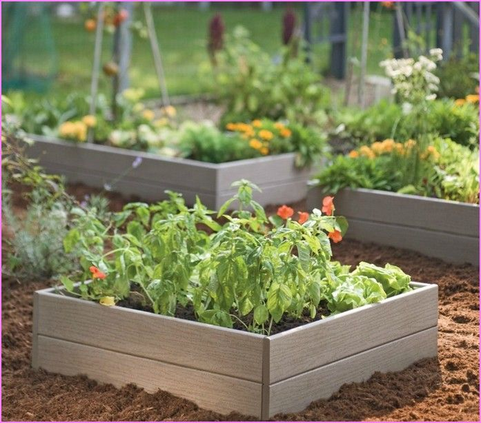 Raised Garden Beds Diy Cheap Home Design Ideas Things For