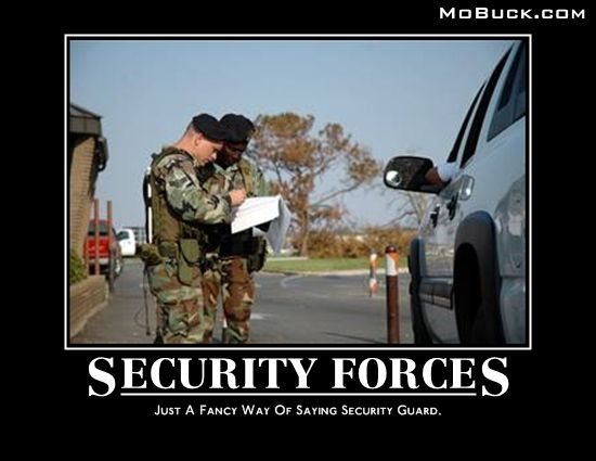 Air Security Memes Force Forces