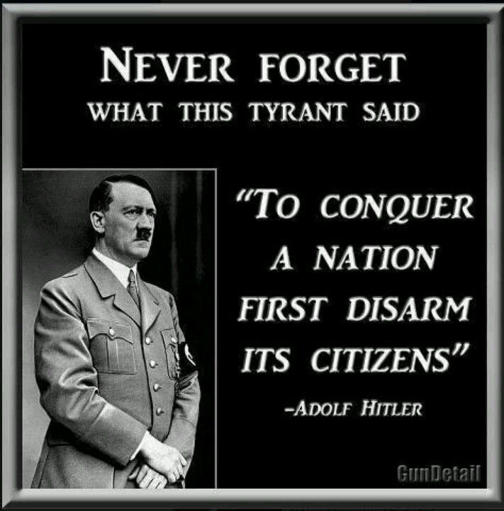 Gun Control Quotes Impressive Adolf Hitler On Gun Control Quotes Weapons Picture