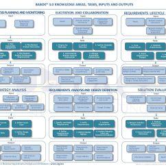 Pmi Knowledge Areas Diagram Mercedes C180 W202 Wiring Iiba Babok Version 3 Tasks Inputs