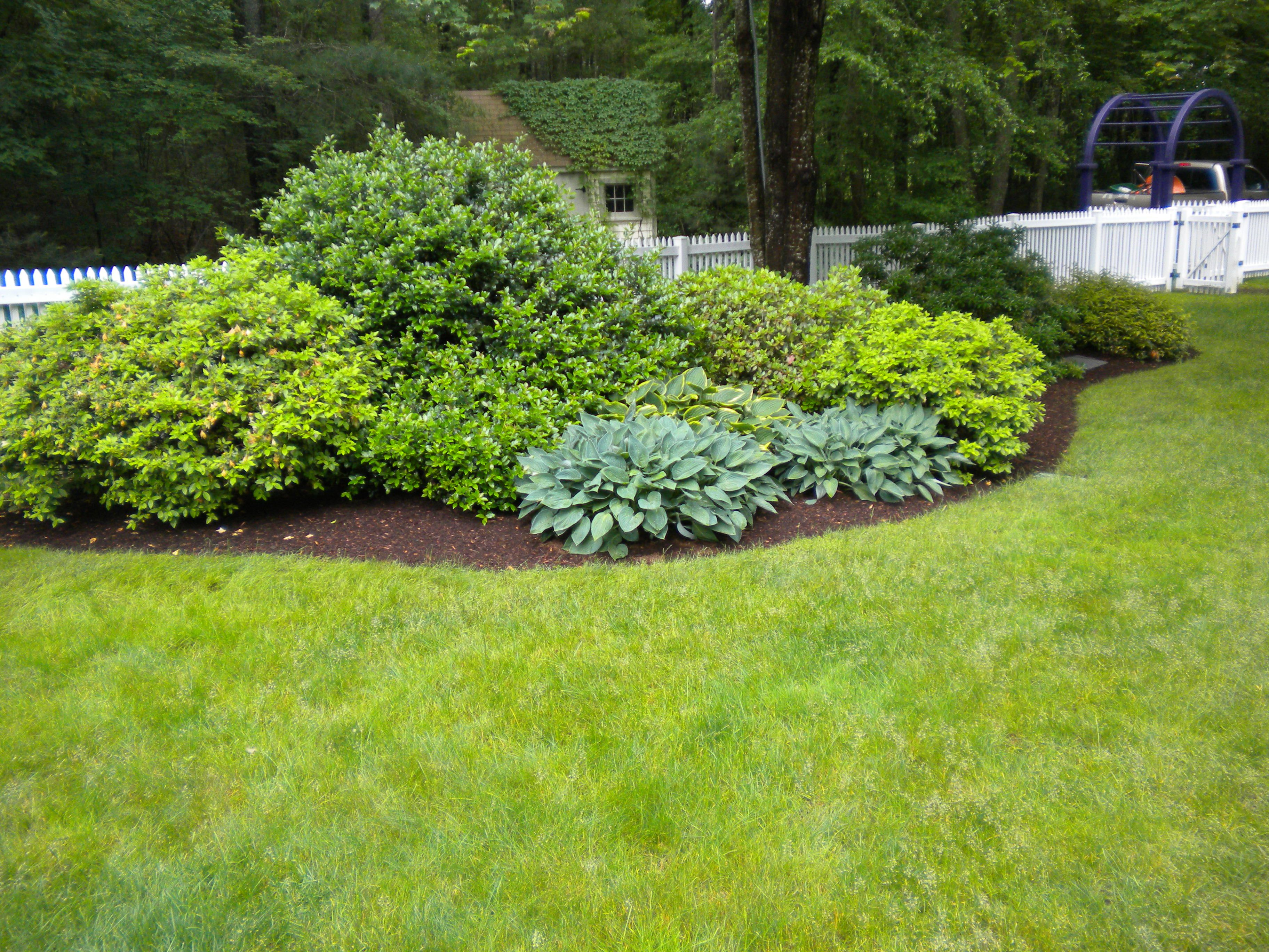 Garden Design Garden Design With Landscaping Plants Newsonair Org