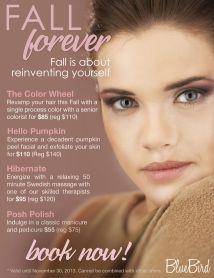 Fall Ready-wear Salon Marketing Campaign