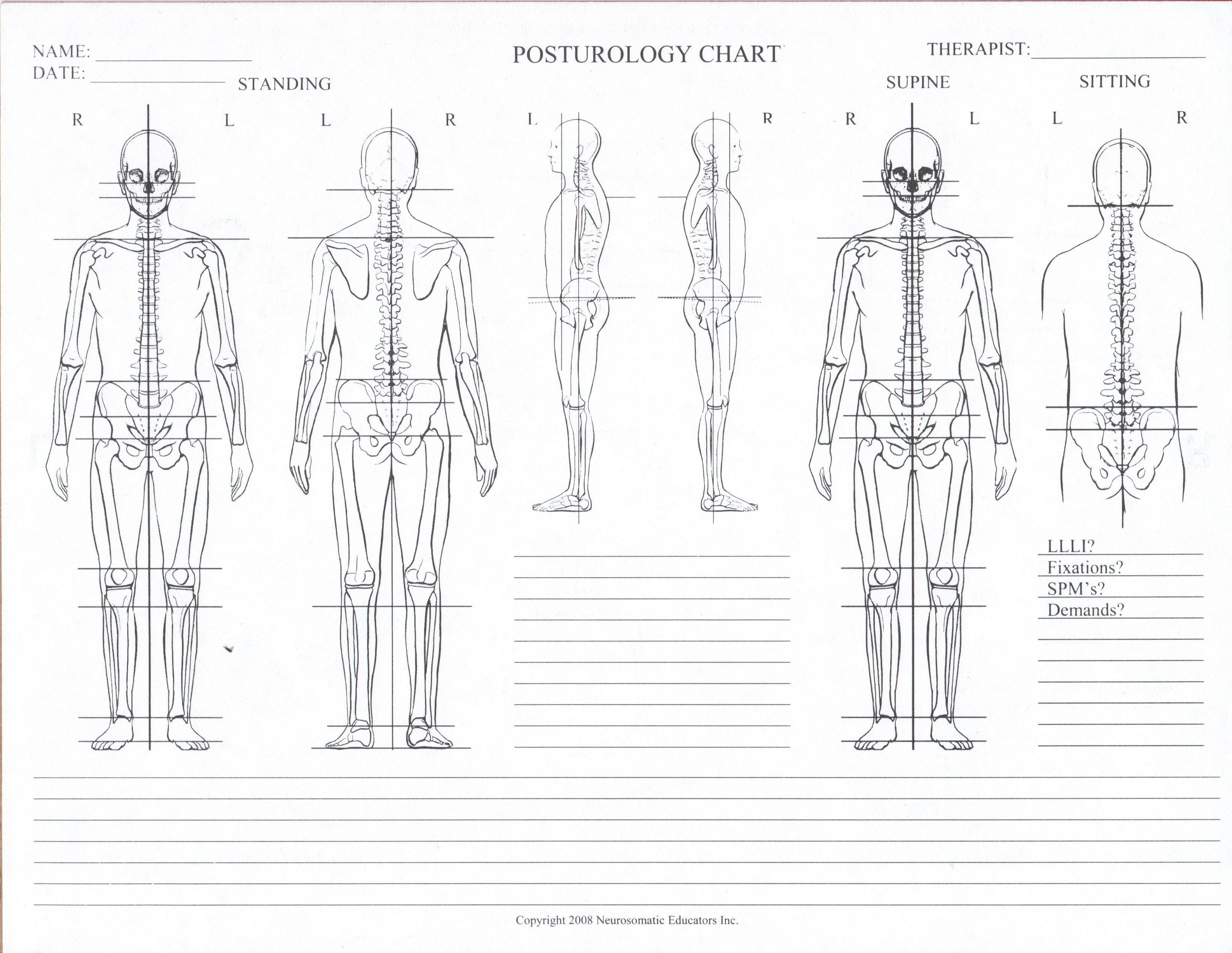 posturology-chart-blank-e1319630941505.jpg 3.291×2.546