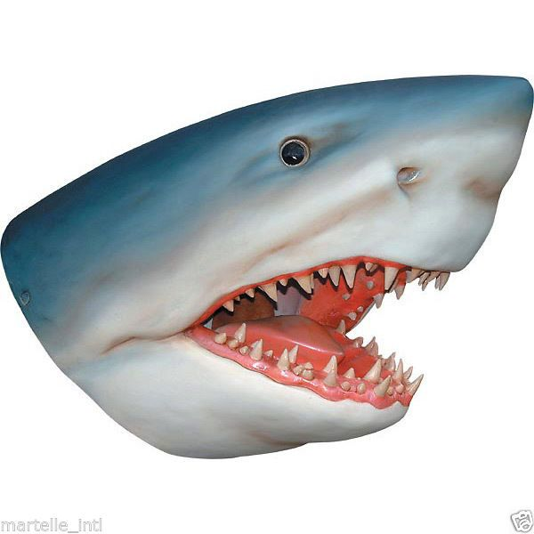 """Shark Head Wall Mount Jaws 34"""" Huge Hand Finished Great"""