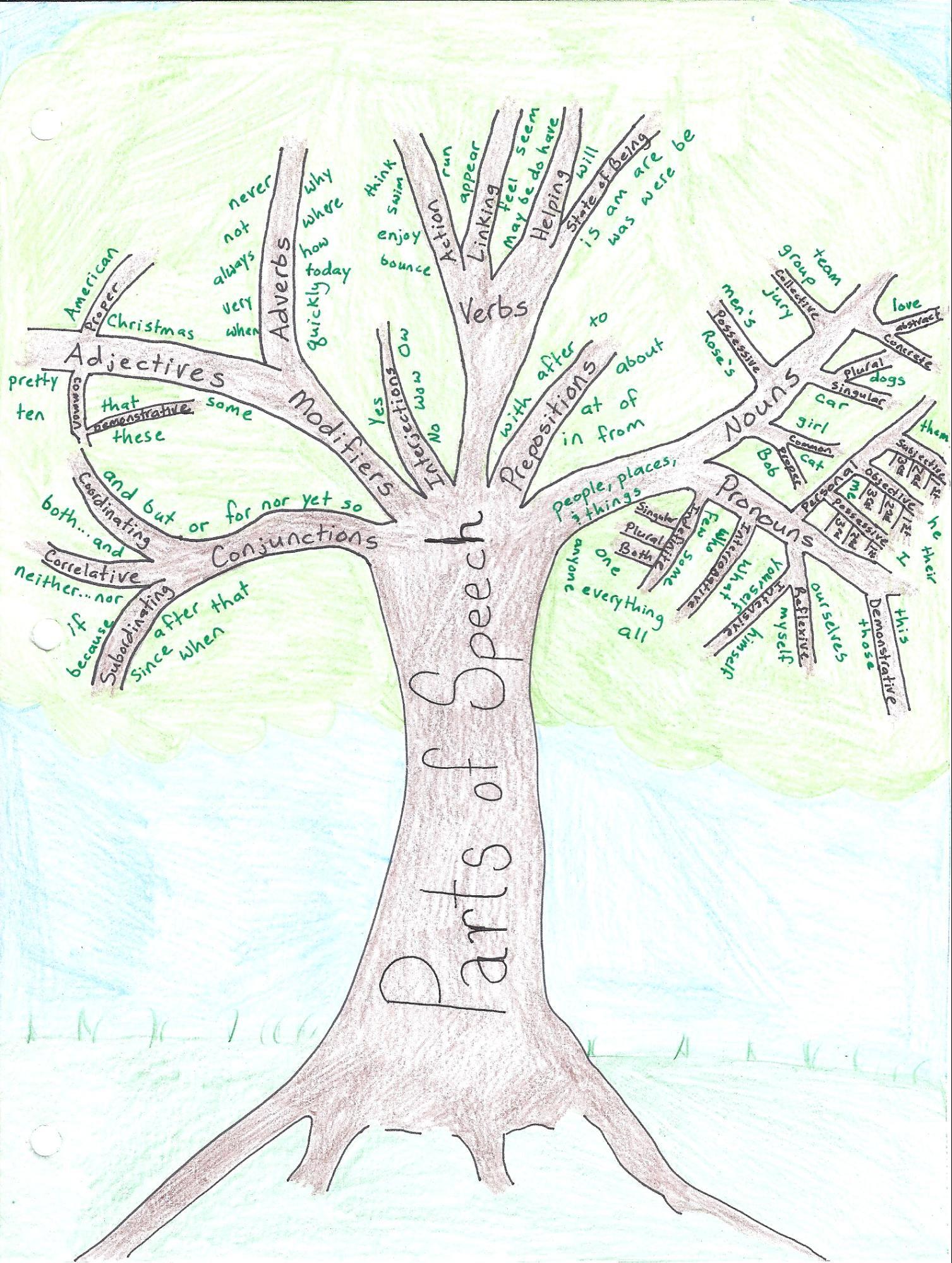 teaching tree diagram vl wiring stereo week 1 english grammar parts of speech cool