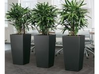 Gardening In Restricted Spaces - Indoor Planter Boxes ...