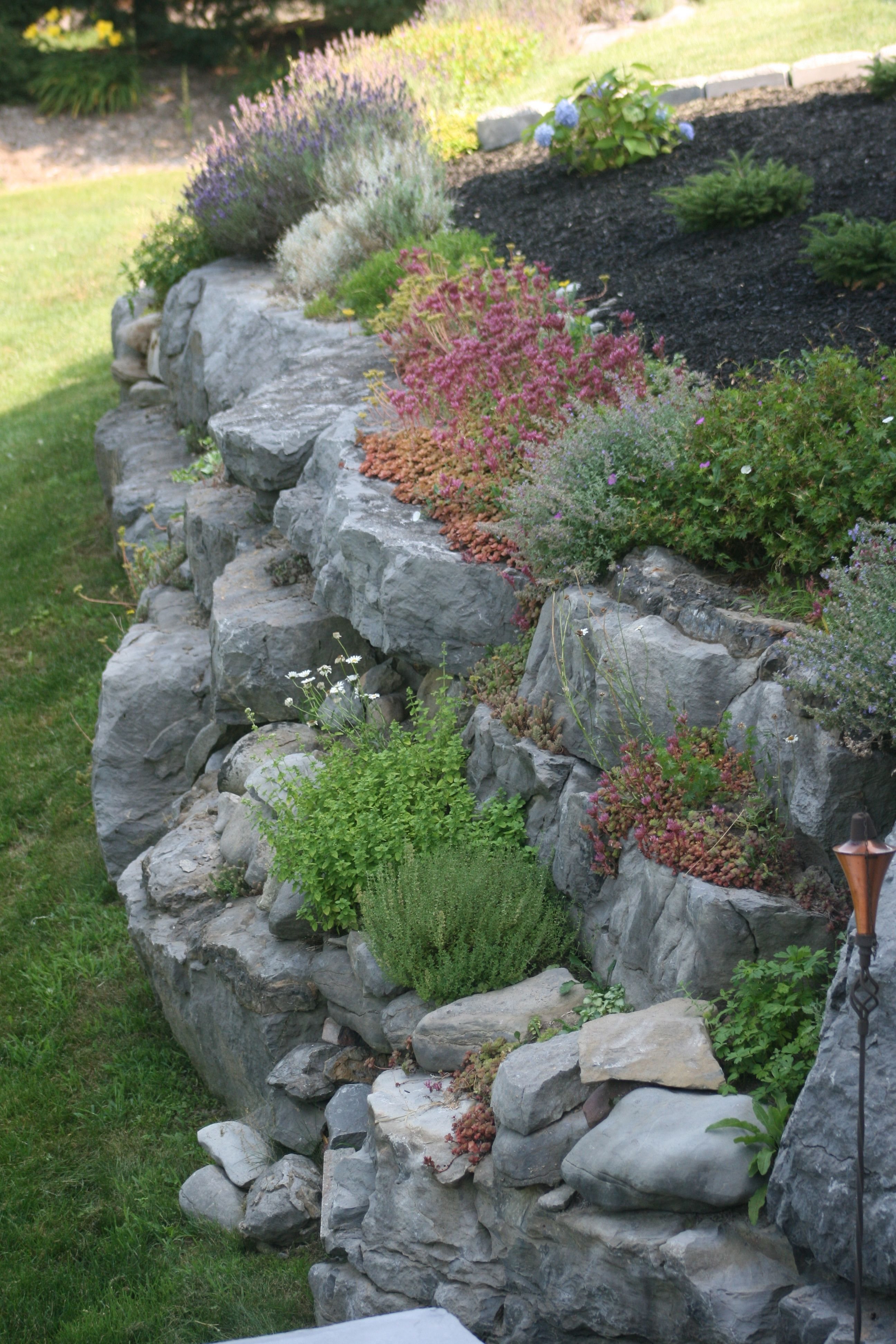 Rock Garden On Retaining Wall Gardening Gazette Opěrné Zdi