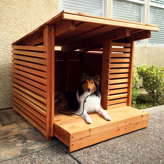Redwood Dog House Summer Created By And The Modern