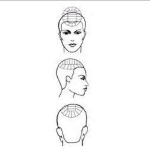 hair sectioning pattern diagram for multi-colored streaks