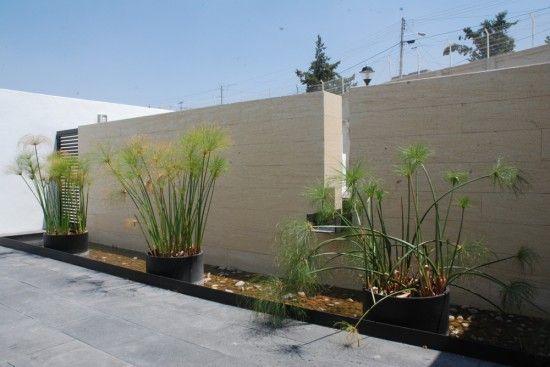 Pot Plants Idea For Minimalist Garden O U T D O O R Pinterest