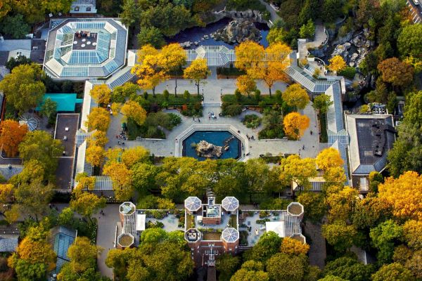 Central Park Zoo In Manhattan. York City Aerial 2016