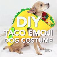DIY Taco Emoji Dog Costume   Easy Halloween DIY Ideas ...
