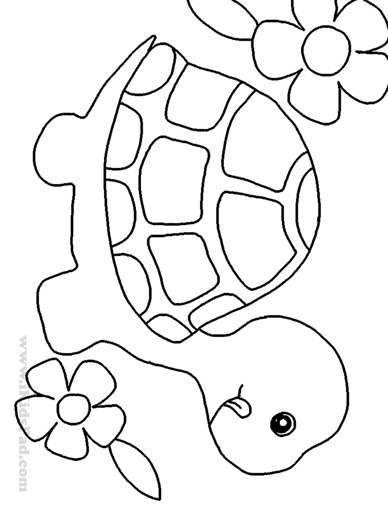 Turtle pattern. I'm thinking about using this image for an