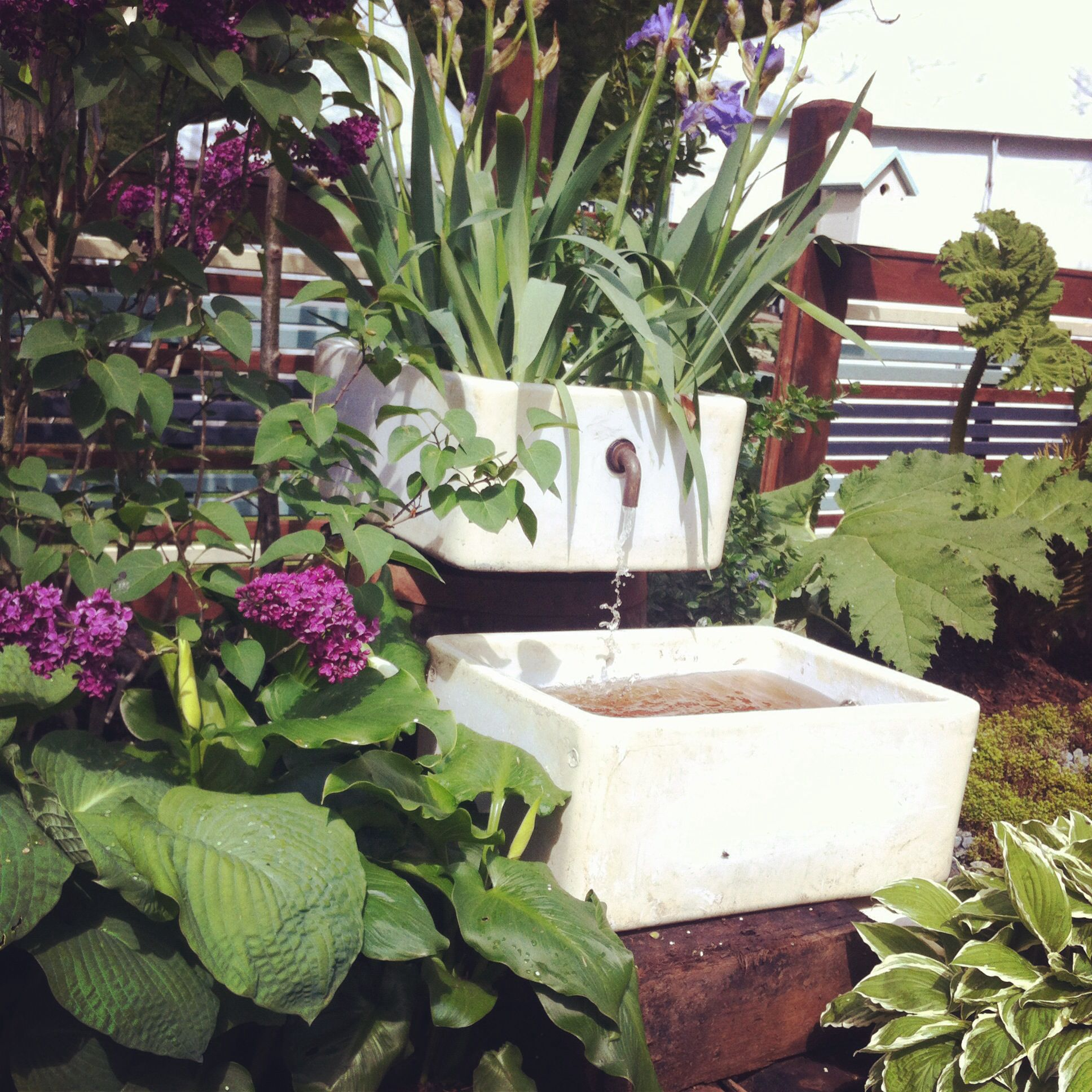 Belfast Sink Garden Feature Find Your Perfect Sink At Salvage