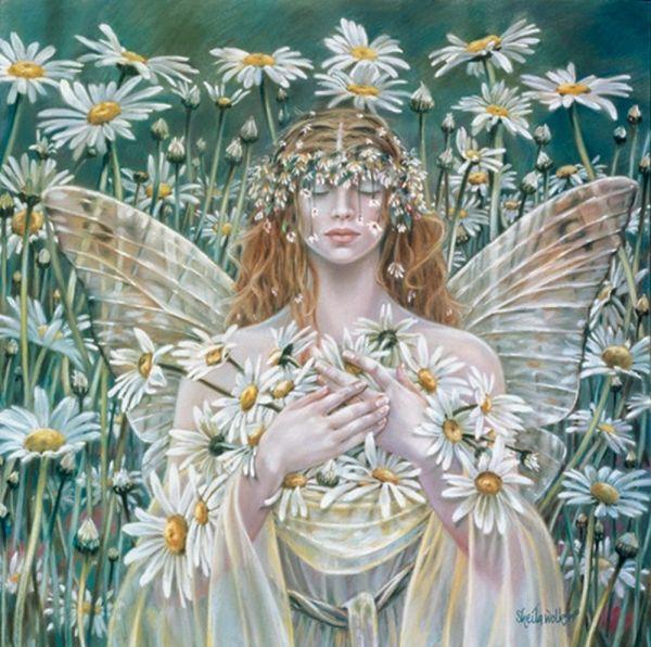 Sheila Wolk - Fairies Fairy Wallpaper And Fantasy Art
