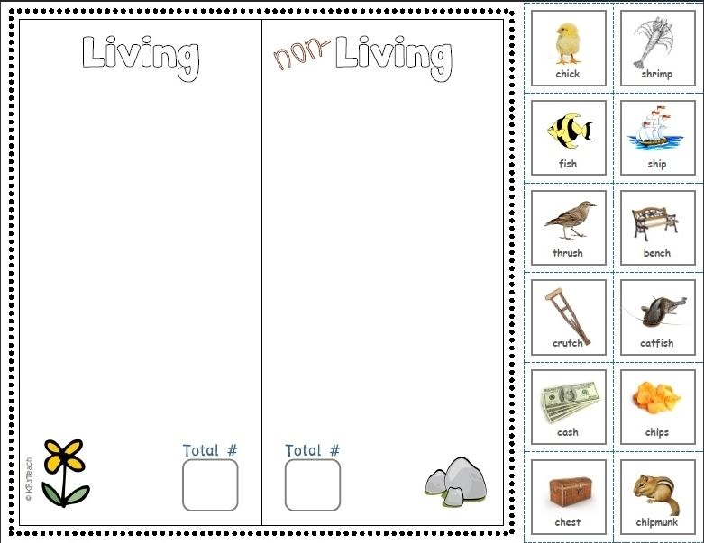 Printables. Living And Nonliving Worksheets