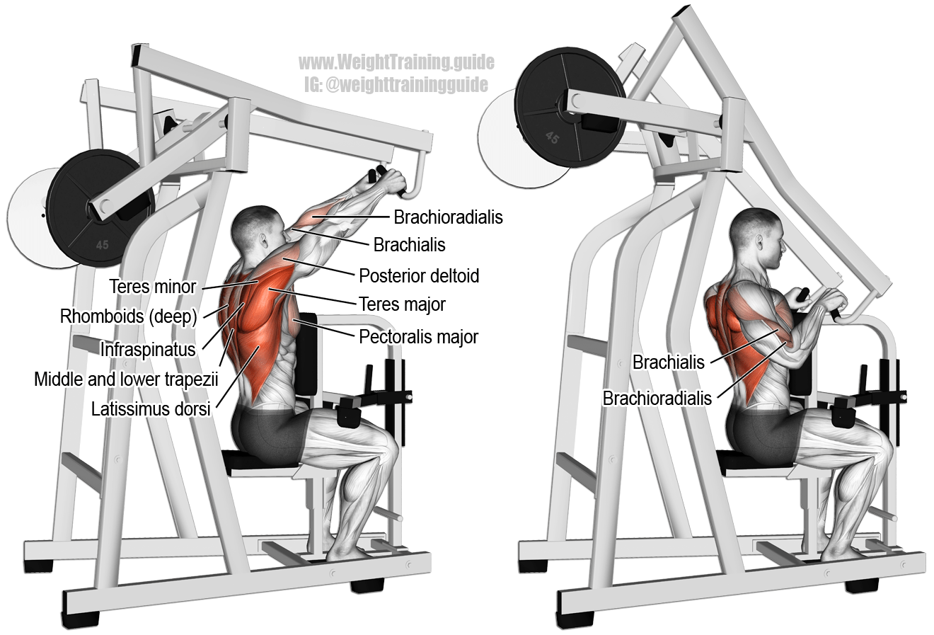 Machine High Row A Major Compound Pull Exercise Main