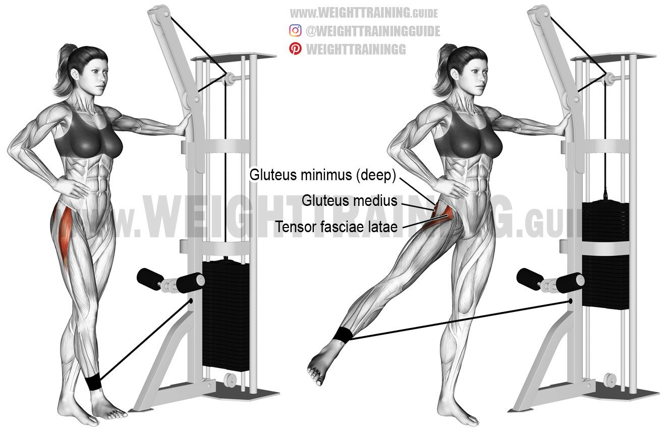 Cable hip abduction An isolation exercise Target muscles