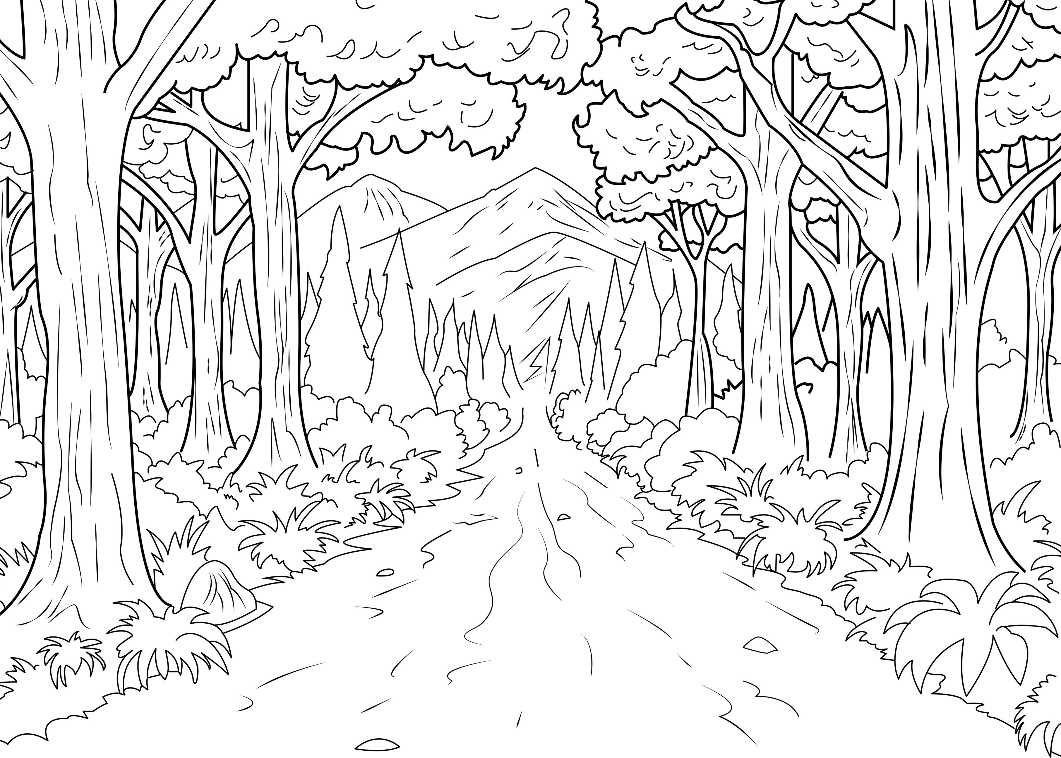 A coloring page of forest made by Celine, From the gallery