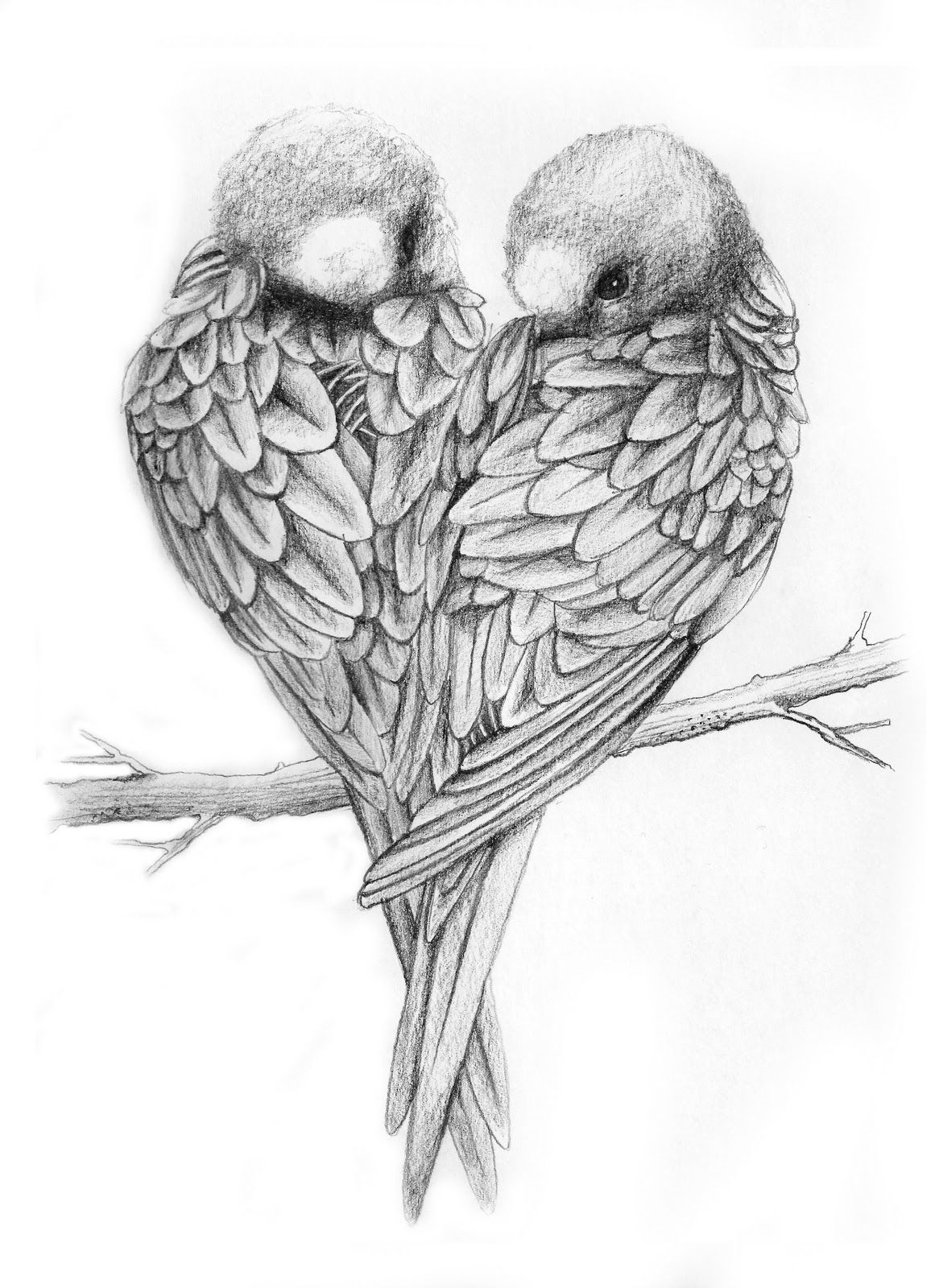 Love Bird Quotes Love Birds Drawing  Quotes Of The Day