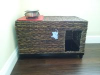 Hide a way Litter Box. - I bought a storage trunk at ...