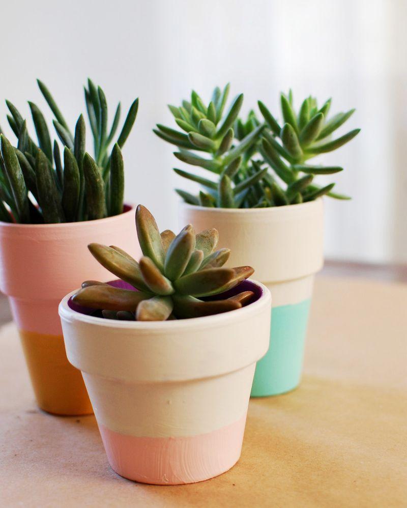15 Fabulous Indoor Garden Ideas Beautiful Planters And Pastel