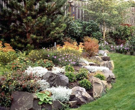 Love This Natural Look Of The Rock Gardening Ideas Pinterest