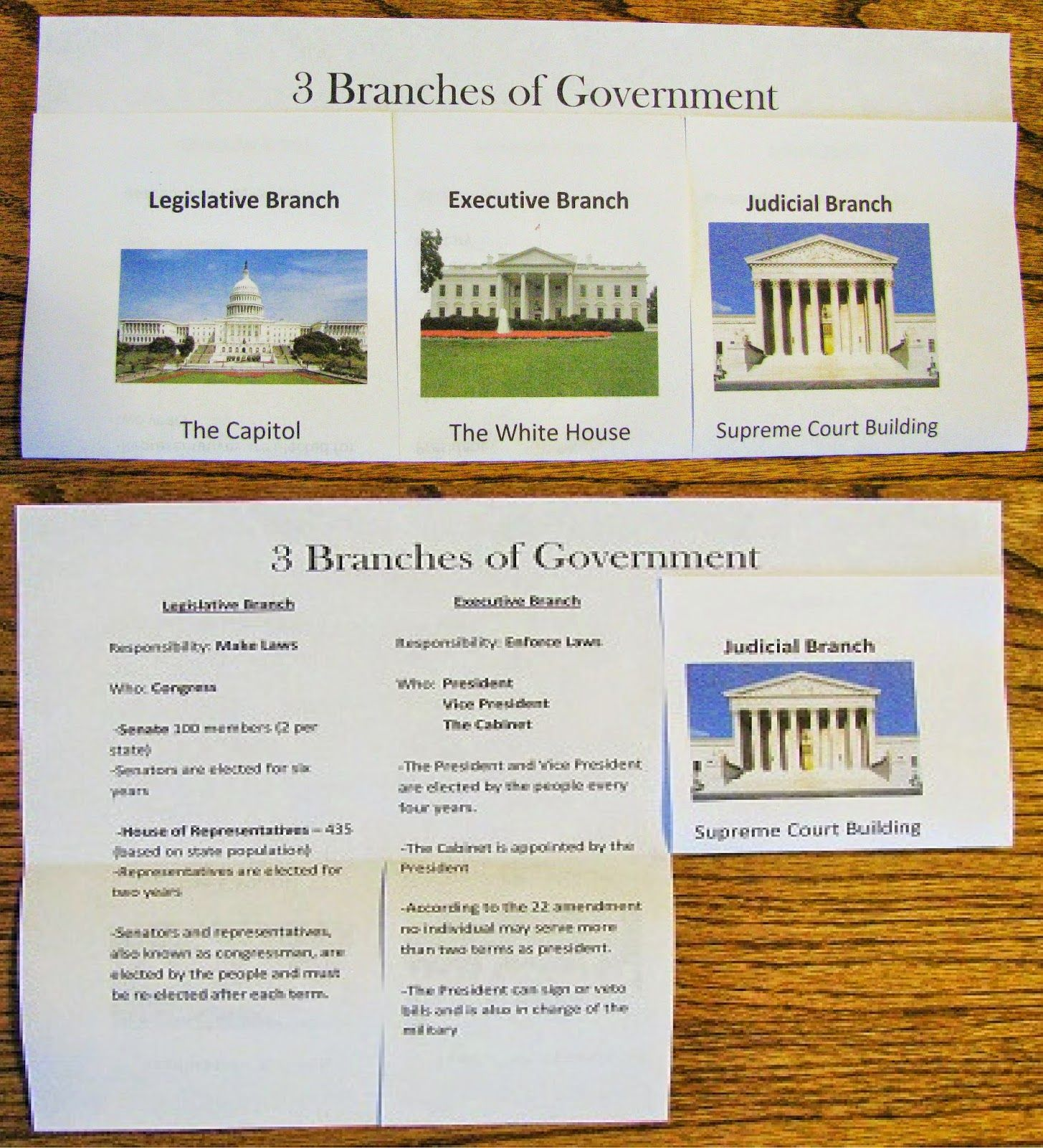 3 Branches Of Government Study Guide Foldable Graphic