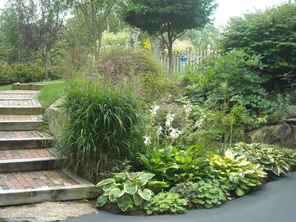 Steps In Hillside Steep Side Yard Slope Big Picture Planning