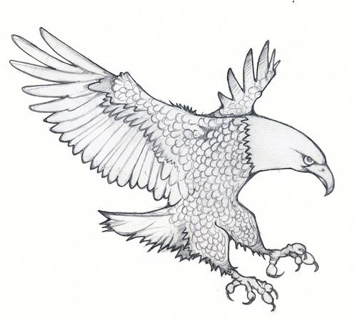 Eagle Embroidery Patterns Eagle Embroidery Patterns