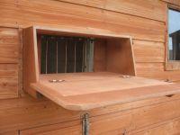 Pigeon Loft Trap
