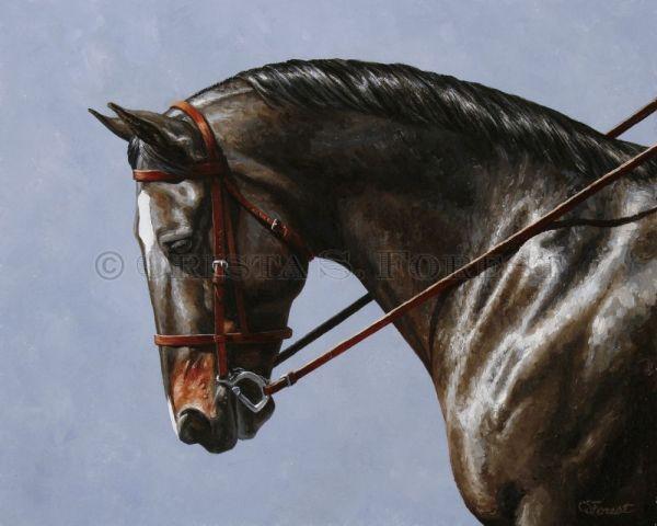 Oil Painting Of Bay Dressage Horse Equine Artist Crista Forest Fine Art