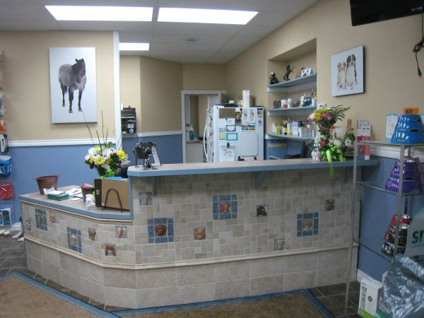 Larger View Of Veterinary Clinic' Reception Area With Handcrafted Relief Animal Tiles