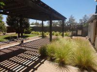 Backyard pergola Marfa, Texas adobe desert home. Stevia ...