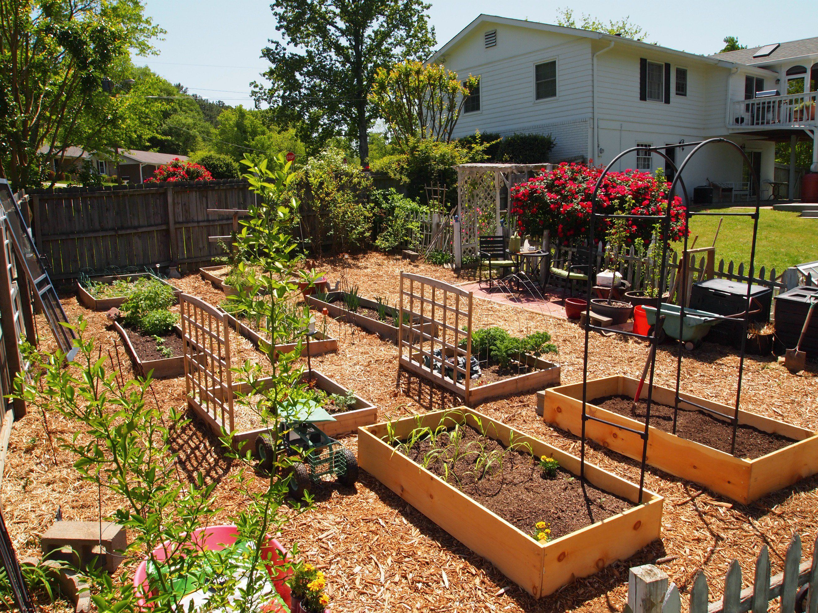 Raised Flower Beds Against House Google Search Little Gardens