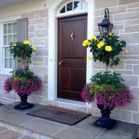 Hibiscus planters  | Hisbiscus container garden ideas ...