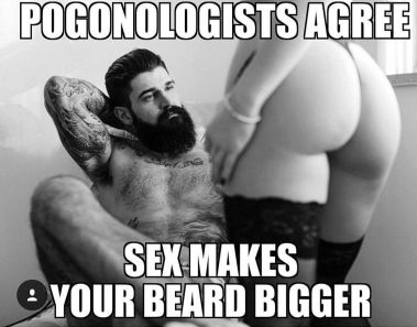 Image result for SEXY BEARD QUOTES