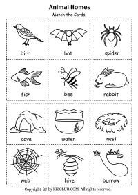 Animals And Their Habitats Worksheet   www.imgkid.com ...