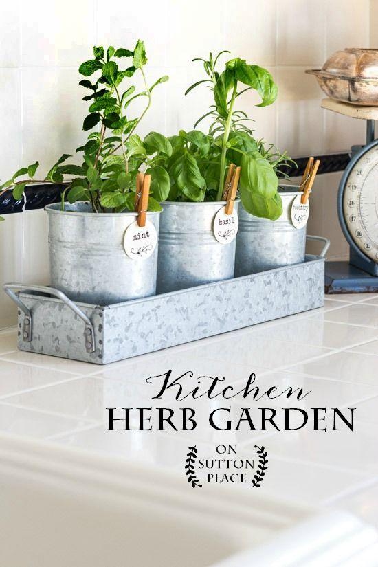 Kitchen Herb Garden  Herbs Herbs garden and Gardens