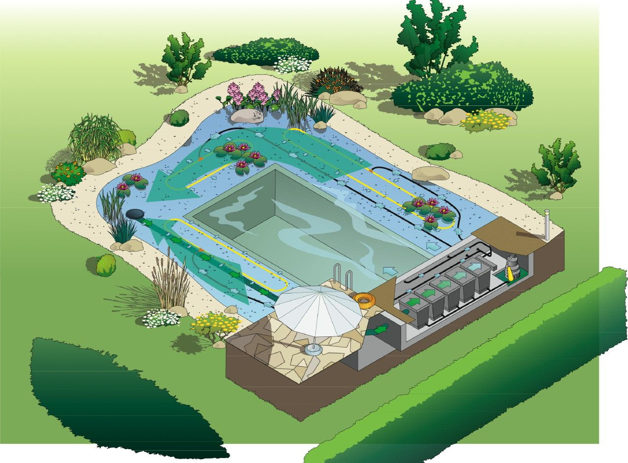 building a koi pond diagram pir motion sensor wiring uk concept drawing for natural swim running water