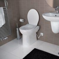 lowe's basement toilet   http://blog.qualitybath.com ...